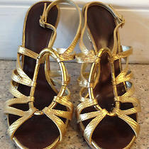 Giuseppe Zanotti Gold Python Strappy Sandal With Gold Ring Photo