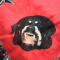 Givenchy Rottweiler Print Scarf Photo