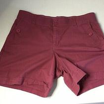 Gloria Vanderbilt Stretch Shorts Burgundy Size 12 Photo