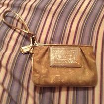 Gold Poppy Coach Wristlet Photo