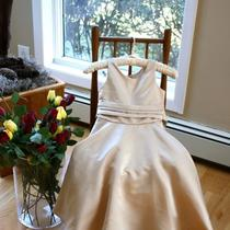 Good Girl Fancy Bridesmaid Flower Girl Dress Sz 4 Formal  Gorgeous Photo
