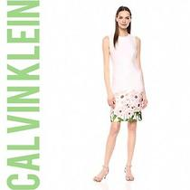 Gorgeous   Blush Floral Border Calvin Klein  Sheath Dress Sz 2 Nwt 134 Photo