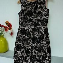 Gorgeous Fearn Cotton Black & Blush Crochet Midi Party Dress Size 8 Bnwot Photo