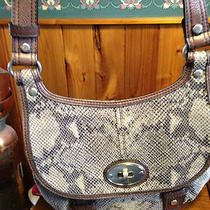 Gorgeous Fossil Snakeskin and Leather Purse in Browns Photo