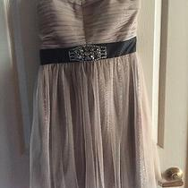 Gorgeous Hailey Logan Adrianna Papell Taupe Gold Sparkle Party Dress 11/12  Photo