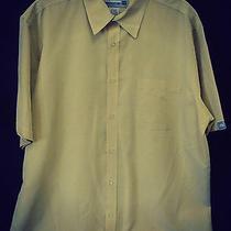 Great Mens Shirt