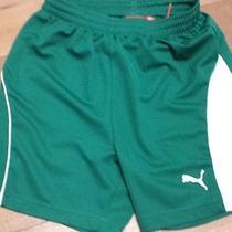 Green Boys Puma Shorts Photo