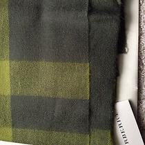 Green Burberry Scarf Photo