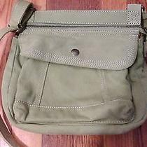 Green Fossil Bag  Photo