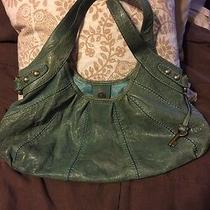 Green Fossil Purse Photo