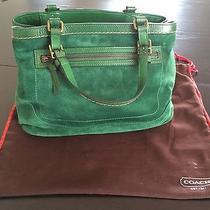 Green Suede Coach Handbag Photo