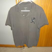 Grey Large Express Polo Large Lion Photo