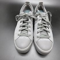 Grey Ugg Sneakers Photo