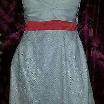 Greylin Dress Medium Blush Nwt Photo
