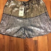Gryphon Sequin Shorts Nwt Holiday  Photo