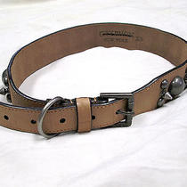 Gryphon Tan Leather Belt With Silver Tone Studs   Size Xs Photo