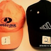 Guc 1 Mossy Oak Ogange Hat ( or ) 2 Adidas Blue Hat  ( U R     B U Y I N G  Photo