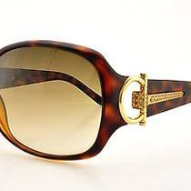 Gucci 3168/s 0791 Havana Women's Rectangular Sunglasses Photo