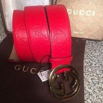 Gucci Belt New With Tags Photo