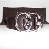 Gucci Belt W/ Double Buckle Brown 259982 Photo