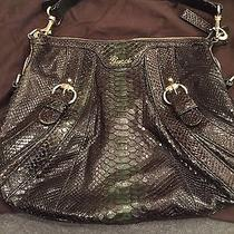 Gucci Black and Green Snakeskin Bag Photo