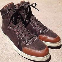 Gucci 'Coda' High-Top Sneaker (Men) Size Us 8.5 Cocoa/ Cuir Photo