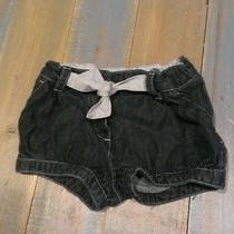 Gucci Infant Shorts  Photo