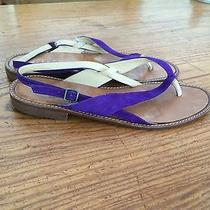 Gucci Purple Suede Sandals Photo