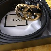 Gucci Snake Belt  Photo