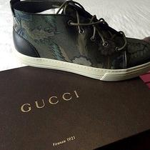 Gucci Sneakers  Photo