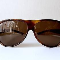 Gucci Unisex Brown Polarized Sunglasses With Tortoise Frames Photo