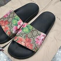 Gucci Womans Gg Blooms Supreme Slides Sandals Size 39 Us 9 Guaranteed Authentic  Photo