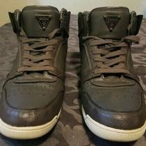 Guess High Top Sneakers. Photo