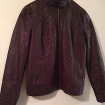 Guess Jacket Size Medium Photo