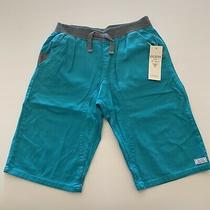 Guess Kids Boys Nwt Shorts Turquoise Shorts Large (16-18) Photo