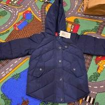 Guess Logo Navy Baby Boy Girl Toddler Puffer Jacket Hoodie Winter Size 3  Photo
