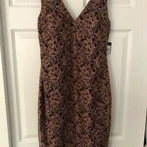Guess Los Angeles Floral & Gold Metallic Lace Dress in Woman Size 6 Photo