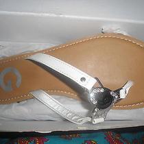 Guess Shoes Women Slipper Sandal Flip Flops 6.5 Photo