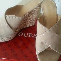 Guess Suede  Shoes Photo