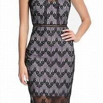 Guess Womens Dress Black  2 Sheath Lace Illusion Cutout Ladder Stitch 128 339 Photo