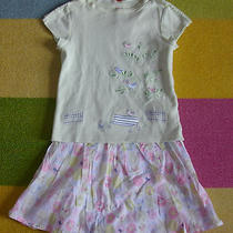 Gymboree a Bird's Life Love Birds Park Bench Tree Shirt & Pink Blue Dot Skirt 4 Photo