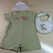 Gymboree Baby Boy 0-3 Month Hedgehog Romper Sweet Pea Hat Bib 3pc Set Photo