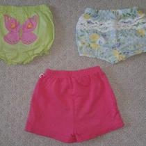 Gymboree Baby Girls Shorts Lot Garden Bloom Palm Springs Size 12 18 24 Months Photo
