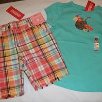 Gymboree Jungle Gem Aqua Top/bermuda Shorts Nwt 4 4t Photo