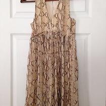 h&m Beige Dress Photo