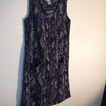 h&m Black Snake Print Work Dress Size 4 Photo