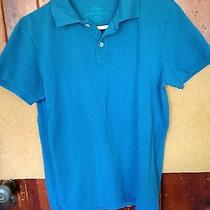 h&m Boys Solid Bluesize M Polo Shirt Photo