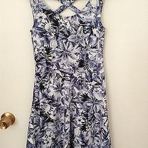 h&m Juniors Size Blue and White  Dress Photo