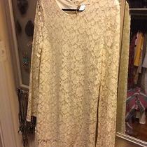 h&m Lace Dress Photo