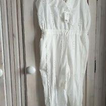 H & M Size 14 Bnwt  Cotton  Crop Jumpsuit Part Lined  Photo